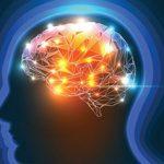 Neuromodulation cérébrale - Labrha